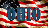Ohio Novelty Metal Magnet