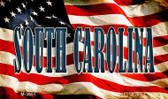 South Carolina Novelty Metal Magnet