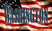 Washington Novelty Metal Magnet