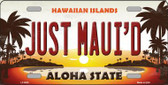 Just Mauid Sunset Background Novelty Wholesale Metal License Plate