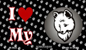 I Love My Pomeranian Wholesale Magnet M-3922