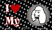 I Love My Poodle Wholesale Magnet M-3923