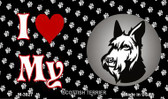 I Love My Scottish Terrier Wholesale Magnet M-3927