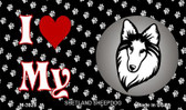 I Love My Shetland Sheepdog Wholesale Magnet M-3928