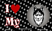 I Love My Siberian Husky Wholesale Magnet M-3930