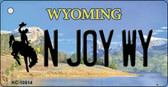 N Joy WY State License Plate Wholesale Key Chain