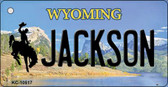 Jackson Wyoming State License Plate Wholesale Key Chain KC-10517