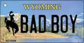 Bad Boy Wyoming State License Plate Wholesale Key Chain