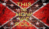 This Is How We Roll Novelty Wholesale Motorcycle License Plate MP-8278