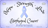 Esophageal Cancer Ribbon Novelty Wholesale Motorcycle License Plate MP-8307