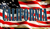 California US Flag Wholesale Novelty Motorcycle Plate MP-3616