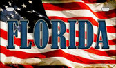 Florida US Flag Wholesale Novelty Motorcycle Plate MP-3620