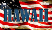 Hawaii US Flag Wholesale Novelty Motorcycle Plate MP-3622