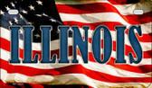 Illinois US Flag Wholesale Novelty Motorcycle Plate MP-3624