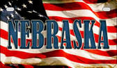 Nebraska US Flag Wholesale Novelty Motorcycle Plate MP-3638