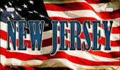 New Jersey US Flag Wholesale Novelty Motorcycle Plate MP-3641