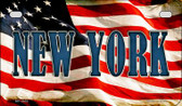 New York US Flag Wholesale Novelty Motorcycle Plate MP-3643