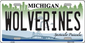 Michigan Wolverines Wholesale Metal Novelty License Plate LP-6108