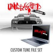 1996 - 2014 Mustang Custom Tunes