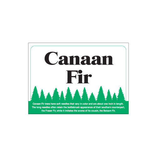 Species Sign - Canaan Fir (JB-SP-2)