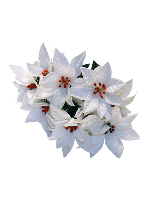 16'' Poinsettia Bush - White (WS-PW-9)
