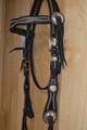 Handmade Western Horse Headstall Black with Spots
