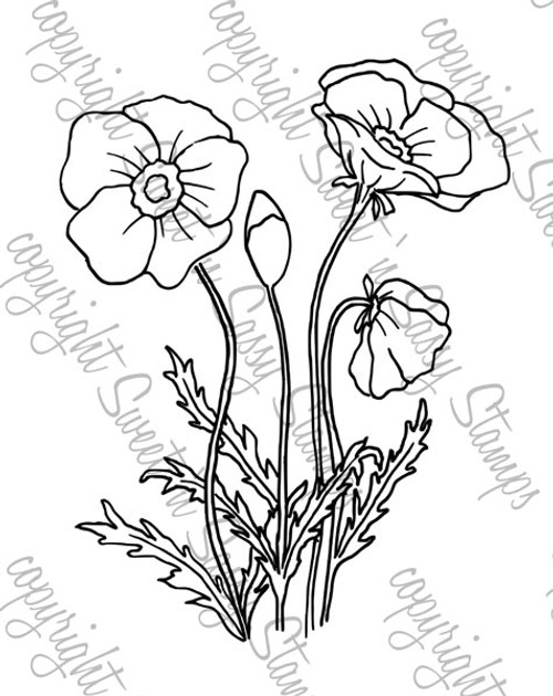 Poppies Digital Stamp