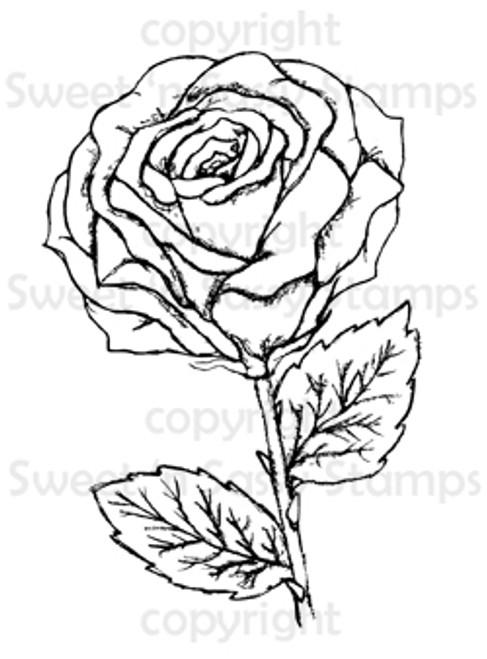 Rose Blossom Digital Stamp