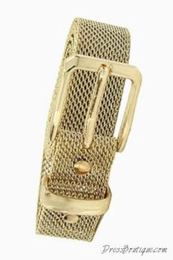 Gold Mesh Belt