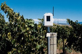 Davis 6345CS Complete Wireless Soil Moisture/Temperature Station