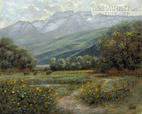 Timpanogos Meadow 20 x 24 LE Signed & Numbered - Giclee Canvas