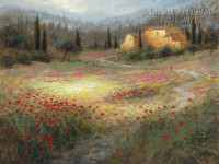 Umbrian Poppy Fields 16x20 LE Signed & Numbered - Giclee Canvas