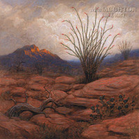 Ocotillo Sunrise 30x30 LE Signed & Numbered - Giclee Canvas