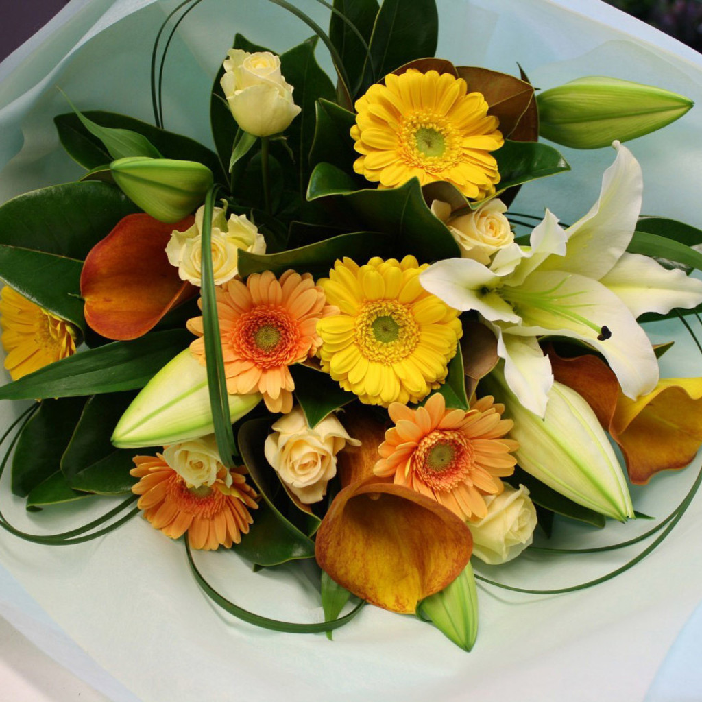 Whites, yellows and pale oranges with seasonal foliages and grass loops.