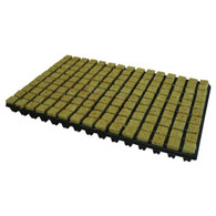 Cultilene Crb Propagation Cubes 25mm Tray Of 150