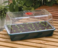 Garland High Top Propagator And Base Large (l37.5cm X W23cm X H18cm)