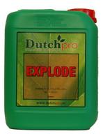 Dutch Pro explode 5L