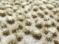 Self-Adhesive Tufts - 6mm Rocky Snow Frosted- Natural Layout