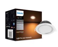 Smart Lighting Philips HUE Downlight