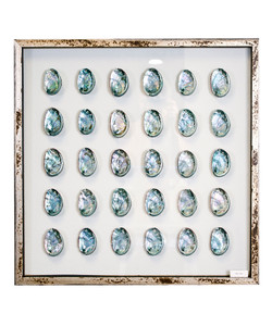Framed Abalone Shells
