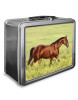 Beautiful Bay Horse Lunch Box