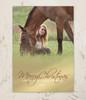 Golden Fade Photo Christmas Card