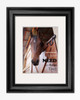 equestrian horse lover poster art print