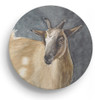 Pygmy Goat Head Art Sandstone Coasters