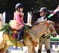10+ Halloween Horse Show Costume Ideas You'll Love