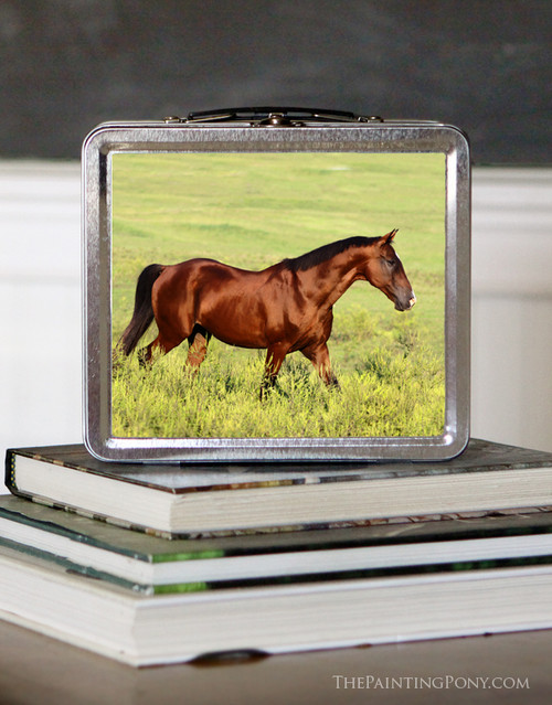 Bay Horse Equestrian Lunch Box