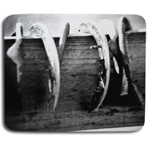 black and white horse shoes photography
