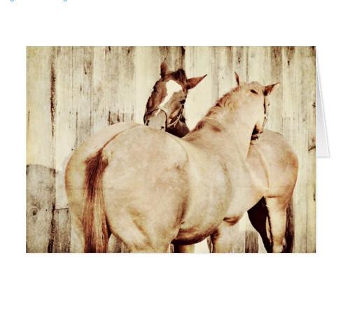 Best Friends Horse Birthday Card