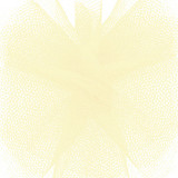 Solid Tulle Fabric - Ivory