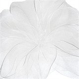 Encore White Sheer Wired Edge